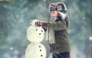 sněhulák 2